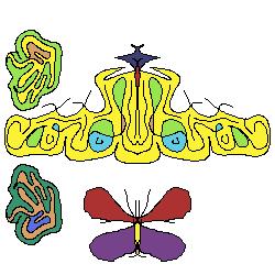 ButterFungi2