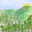 forest test 1