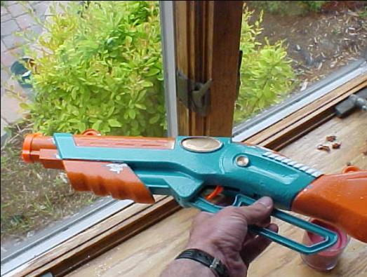 Mr. Cantine's Gun